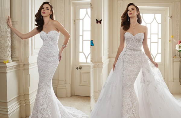 Y11652 Sophia Tolli Look Book