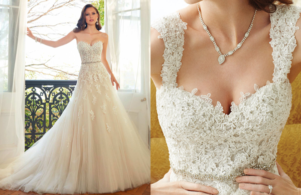 Y11552 Sophia Tolli Look Book